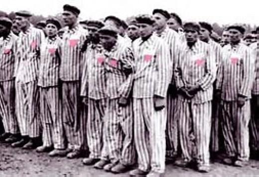 homosexuals in concentraton camp