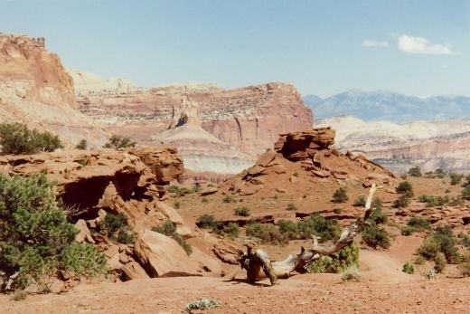 Gorgeous scenery in Capitol Reef National Park