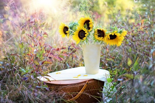Sunflowers are a symbol of the Harvest and can be used in your Mabon decor.