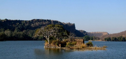 Lake if Ranthabore National Park