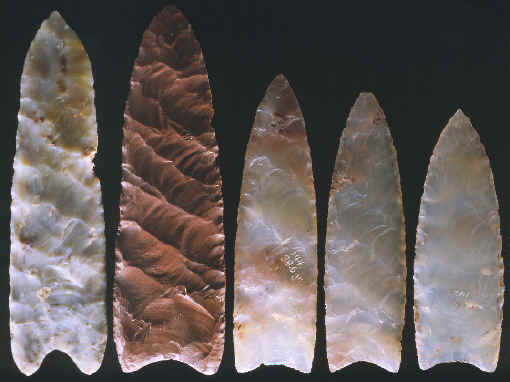 Clovis spear points and arrow heads