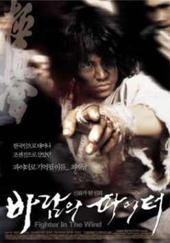 Fighter in the Wind (2008) Review