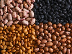 Beans are Protein Machines