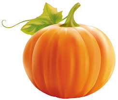 A pumpkin is a cultivar of a squash plant, most commonly of Cucurbita pepo, that is round, with smooth, slightly ribbed skin, and deep yellow to orange coloration. The thick shell contains the seeds and pulp. Some exceptionally large cultivars