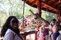 10 Reasons to Visit Kenya