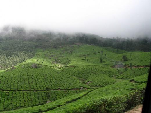 Chinnakanal