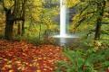 Ten Great Educational Activities for Autumn