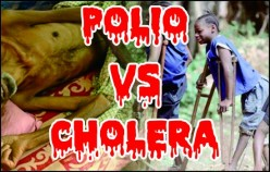Cholera VS Polio. What Do You Think is Worse?