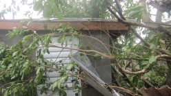Hurricane Irma: Minimal Damage in St. Kitts