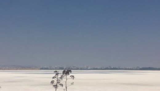 Larnaca Salt Lake View