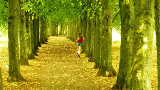 Running in Fall leaves...