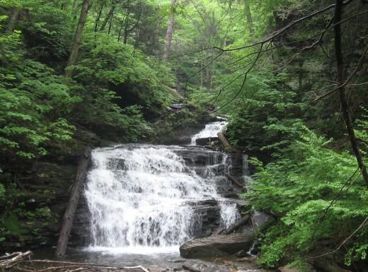 Conestoga Falls (17 feet)