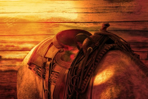 Saddle pad and saddle are important horse equipment for riding.