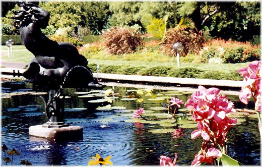 Sculptures and water lilies in reflection pool near the Climatron in Missouri Botanical Garden.