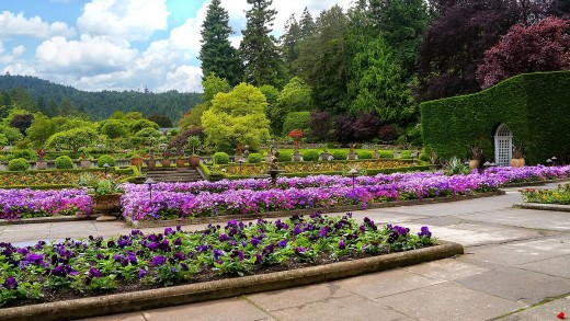 View of the Italian gardens at Butchart Gardens, Brentwood Bay, BC.