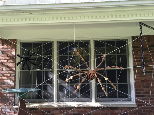 Decorate a window with spider webs and a spider or two.
