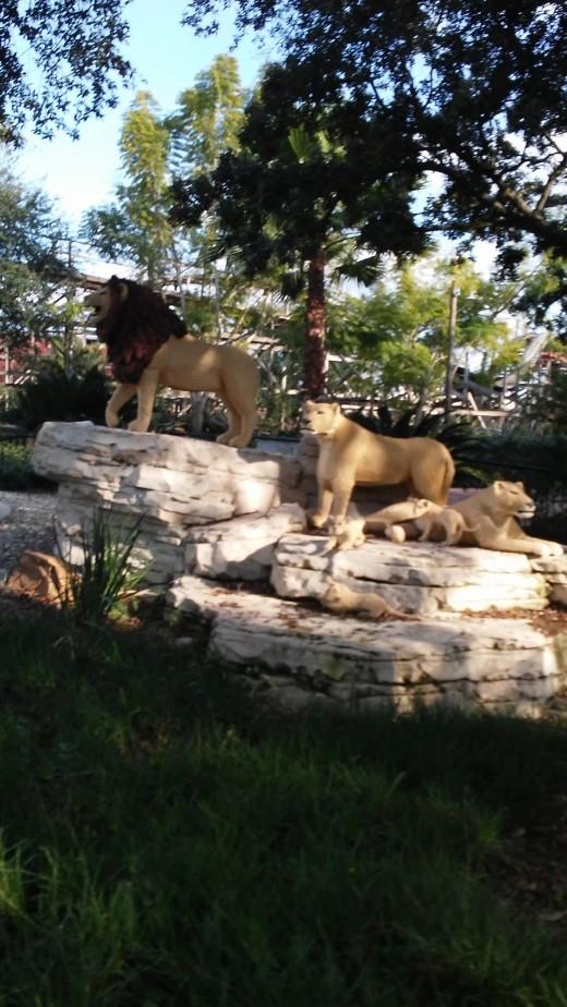 Lego Lion family