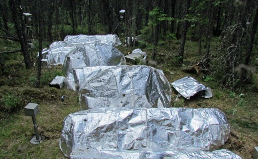 Model Fire Shelters