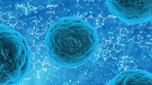 Scientists are claiming stem cells could be used to reduce that aging process. If this is true, this could change the every aspect of our existence.