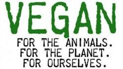 Going Vegan: 5 Easy Tips