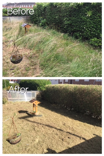 Before:  An overgrown area After: Land reclaimed and tidy
