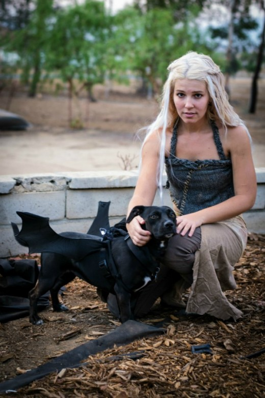 Daenerys Targaryen knows the threat the North holds and her Drogon is ready to help her save the day.  And you can dress up as this Khaleesi, with your canine best friend at your side, dressed up as Drogon this Halloween.