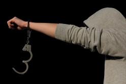 Understanding Criminology