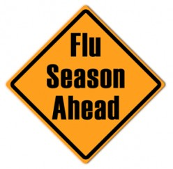Do you think flu shots are wise to get?