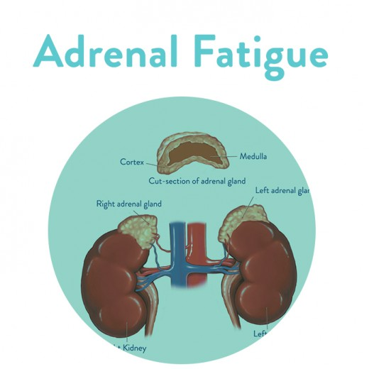 Adrenal Fatigue Syndrome is becoming all too common in the United States. Too many people are having hard time handling stressful situations.
