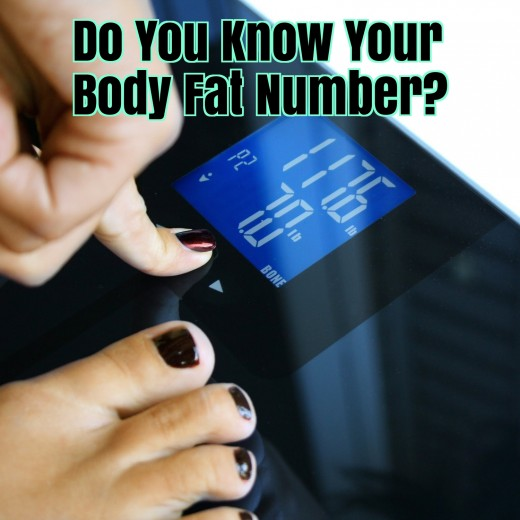 The Ten Best Rated Body Fat Scales For 2019 Caloriebee