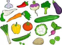 Vegetable Idioms