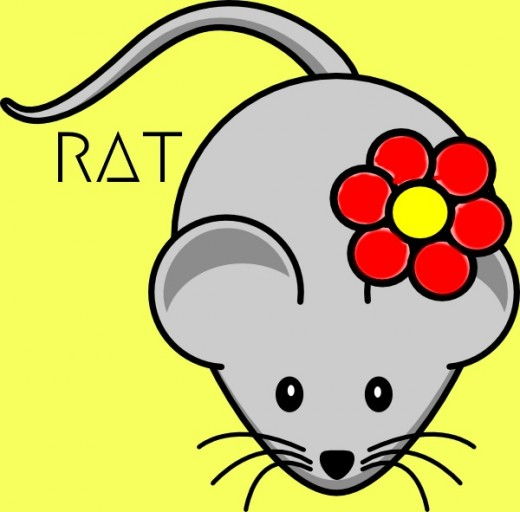 2018 Rat horoscope