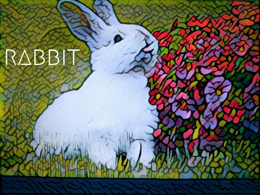 2018 Rabbit horoscope