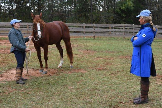 Yvonne Barteau did a hands on clinic during the Tryon International Film Festival.