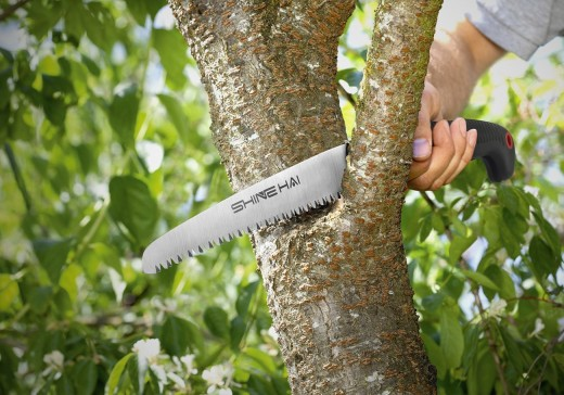 Which tree saw is best dengarden hand pruning saws greentooth Gallery