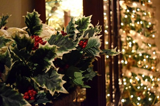 There are more plants associated with Christmas than the evergreen tree.