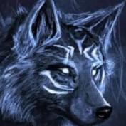 Eugene Druchuk profile image