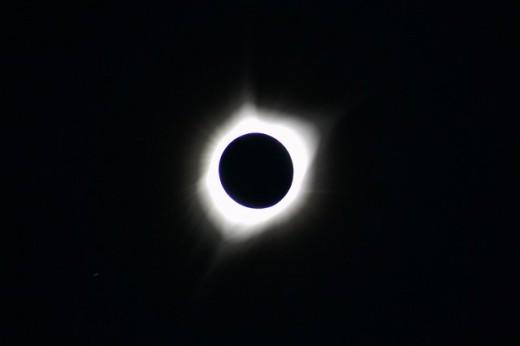 Black Moon females