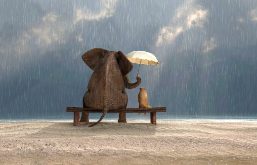 Kindness costs nothing, sometimes, it may only be 50% of your umbrella space.