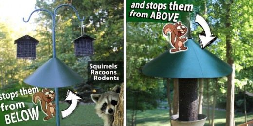 Wrap around squirel-racoon stopper