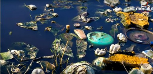 We are using and disposing of so much trash that we are destroying our water as well as our land.