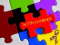 Do You Think We Should Cure Autism If We Could?