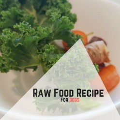 Raw Food Recipe For Dogs