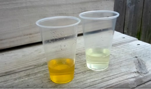 1/2 cup fresh urine on the left; and 1/2 cup of white refined vinegar on the right