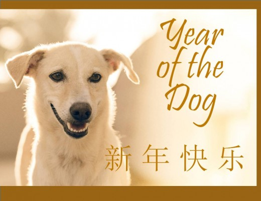 "Year of the Dog Photo Cards. The Chinese characters say ""Happy New Year."""