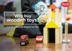Why Buy Wooden Toys Instead of Plastic Toys for Children?
