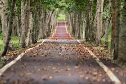 Battling depression with Mindfulness