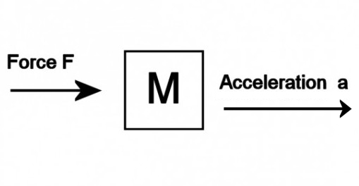 A force causes a mass to accelerate