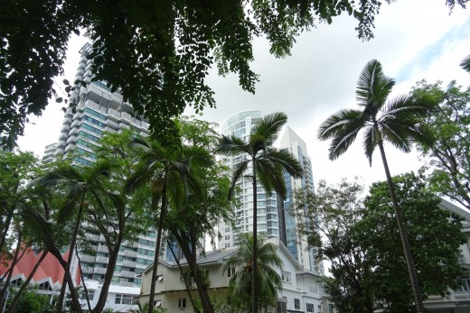 There are one millions trees in Singapore