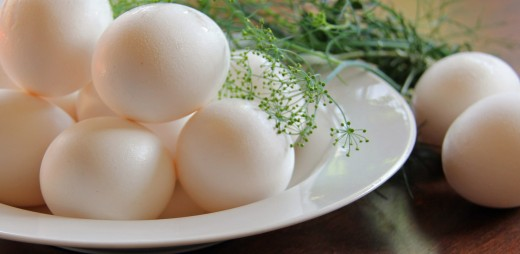 Eggs are an excellent source of several B vitamins.